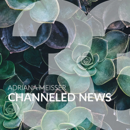 25. August: Live Channeled NEWS Nr. 33